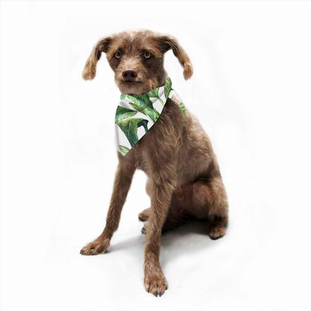 "Kess Original ""Banana Leaves"" Green White Pet Bandana - Outlet Item"