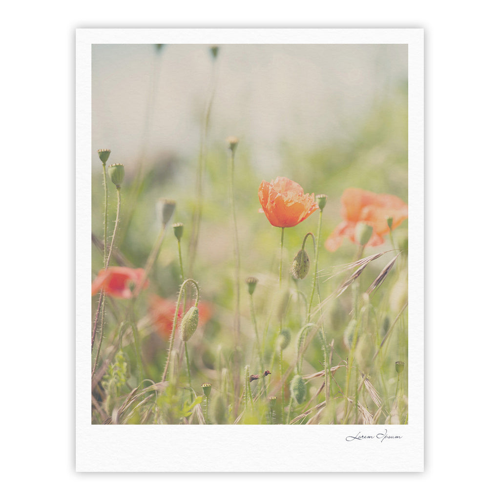 "Laura Evans ""Fields of Remembrance"" Green Orange Fine Art Gallery Print - KESS InHouse"