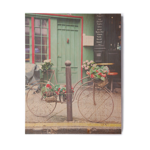 "Laura Evans ""Bicycle Art"" Green Multicolor Photography Birchwood Wall Art"