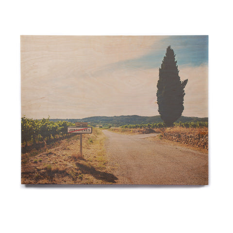 "Laura Evans ""Leaving Jonquieres"" Green Multicolor Photography Birchwood Wall Art"