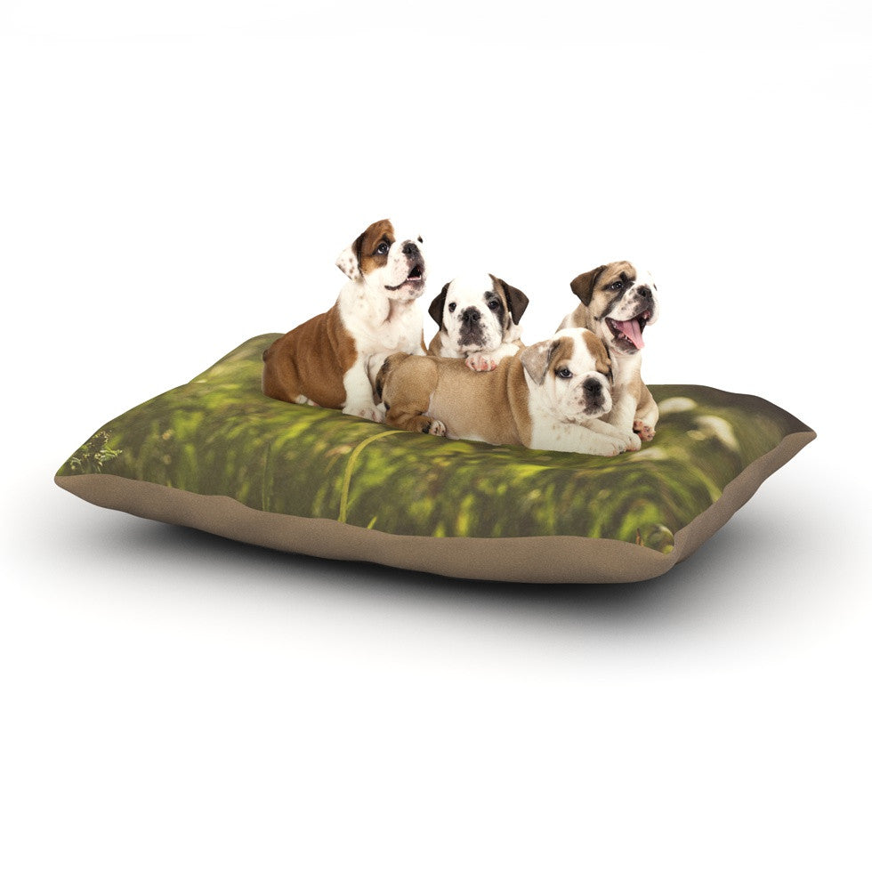 "Libertad Leal ""As You Wish"" Dandelions Dog Bed - KESS InHouse  - 1"