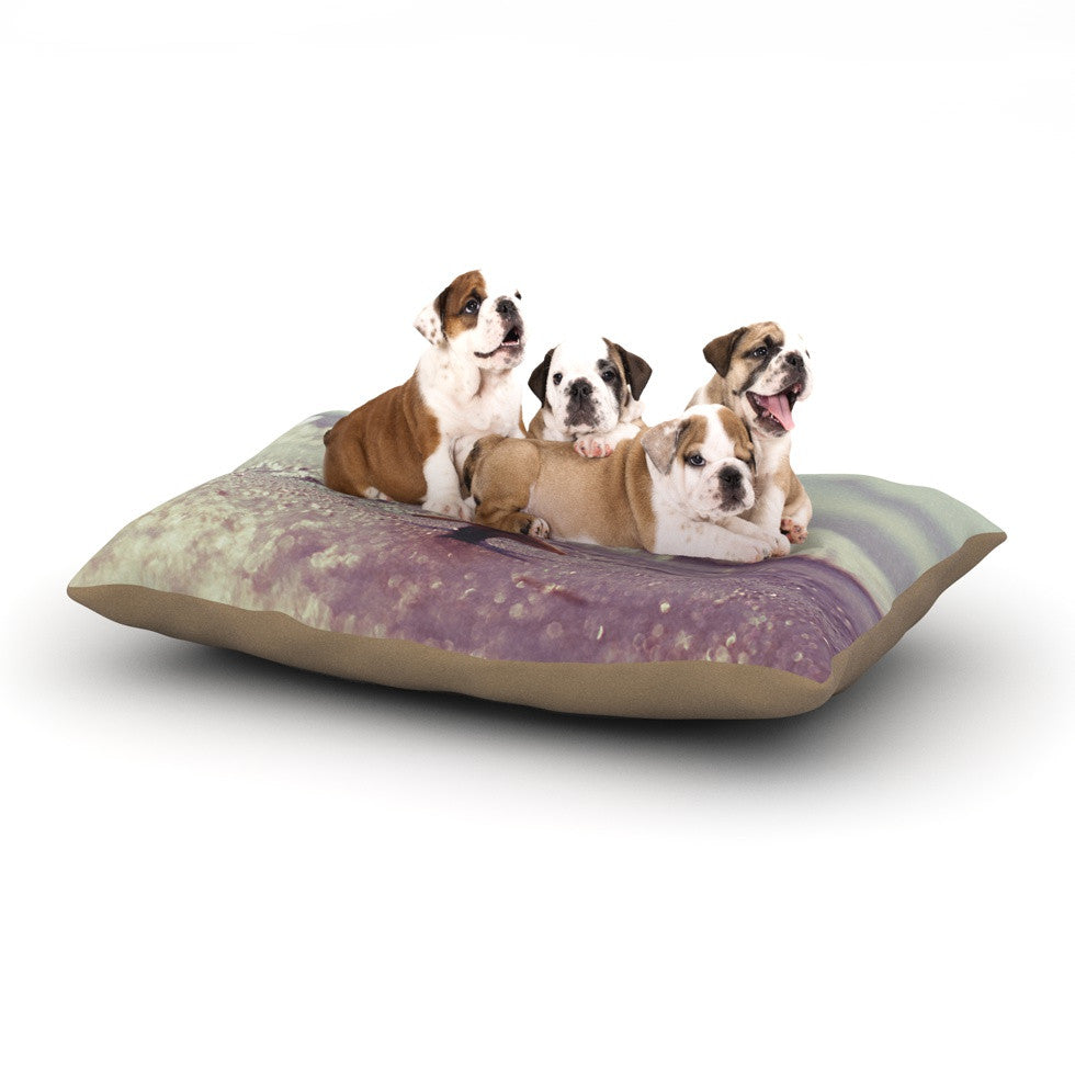 "Libertad Leal ""You are a Star"" Dog Bed - KESS InHouse  - 1"
