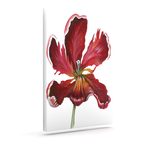 "Lydia Martin ""Open Tulip""  Art Canvas - Outlet Item"