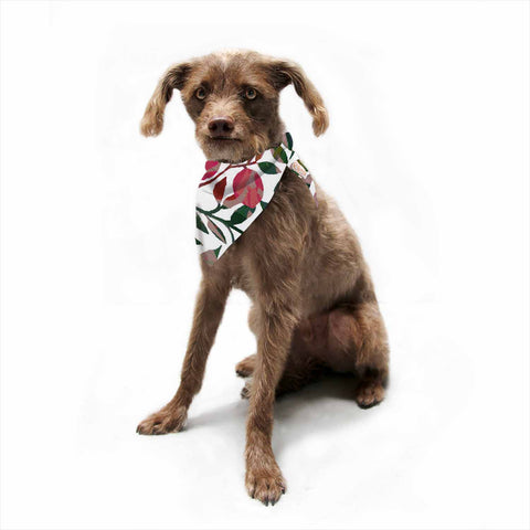 "Laura Nicholson ""Rosy Fruits"" Pink Coral Floral Contemporary Illustration Digital Pet Bandana"