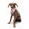 "Hitidesign ""Crazy Flowers"" Pink Blue Illustration Pet Bandana - Outlet Item"