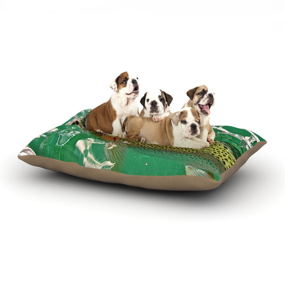 "Maynard Logan ""Catch"" Dog Bed - KESS InHouse  - 1"