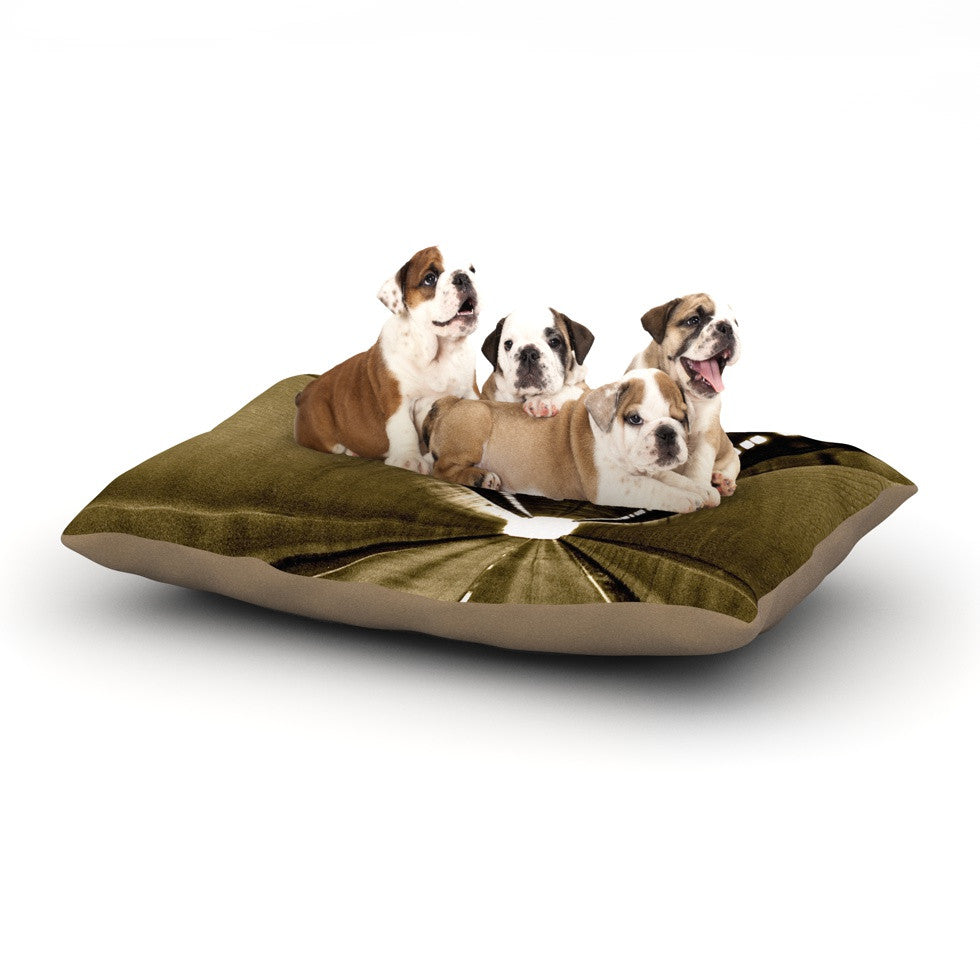 "Maynard Logan ""Tunnel"" Dog Bed - KESS InHouse  - 1"