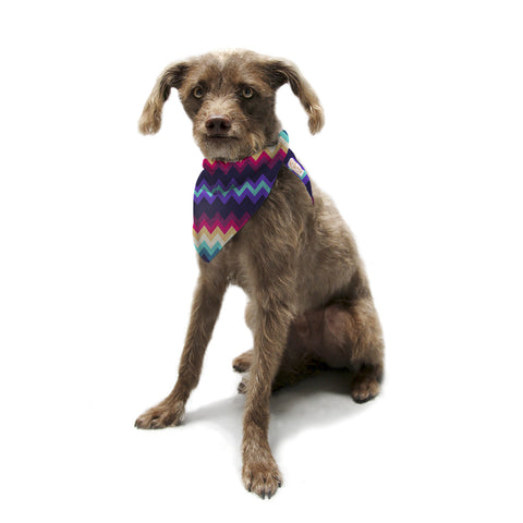 "Nika Martinez ""Surf Chevron"" Pet Bandana - KESS InHouse  - 1"