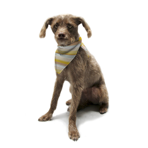 "Nika Martinez ""Desert Waves"" Pet Bandana - KESS InHouse  - 1"