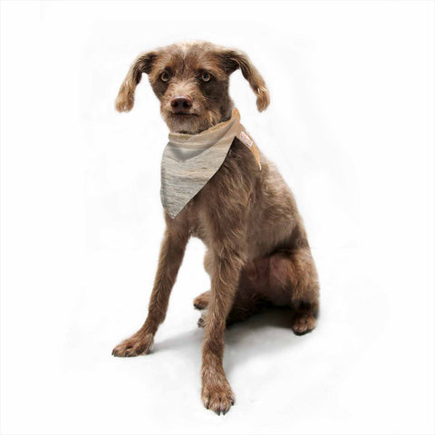 "MaryJo ""White Waves"" White Beige Holiday Nature Digital Photography Pet Bandana"
