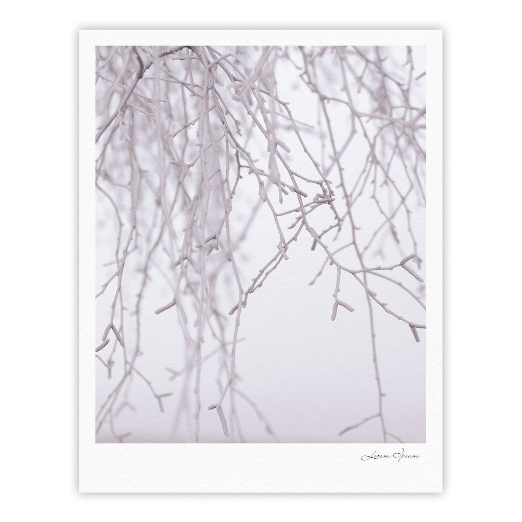 "Monika Strigel ""Frozen"" White Fine Art Gallery Print - KESS InHouse"