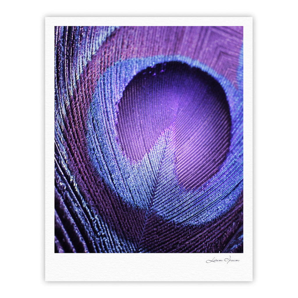 "Monika Strigel ""Purple Peacock"" Lavender Fine Art Gallery Print - KESS InHouse"