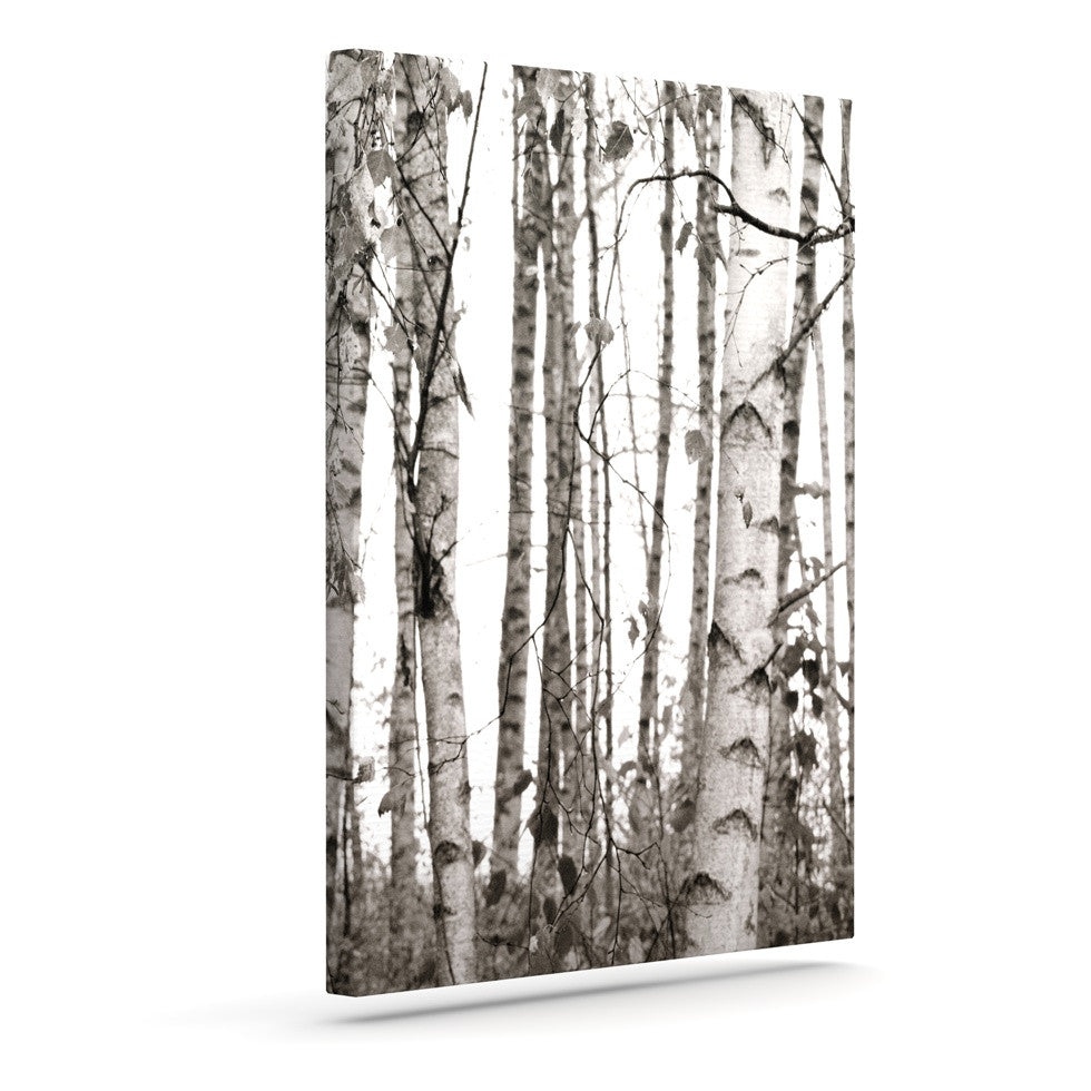 "Monika Strigel ""Birchwood"" Gray Forest Canvas Art - KESS InHouse  - 1"