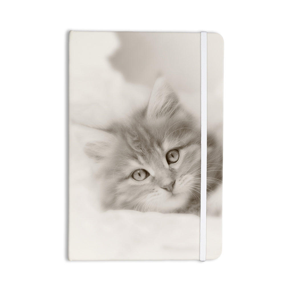 "Monika Strigel ""Main Coon Kitten"" Gray Cat Everything Notebook - KESS InHouse  - 1"