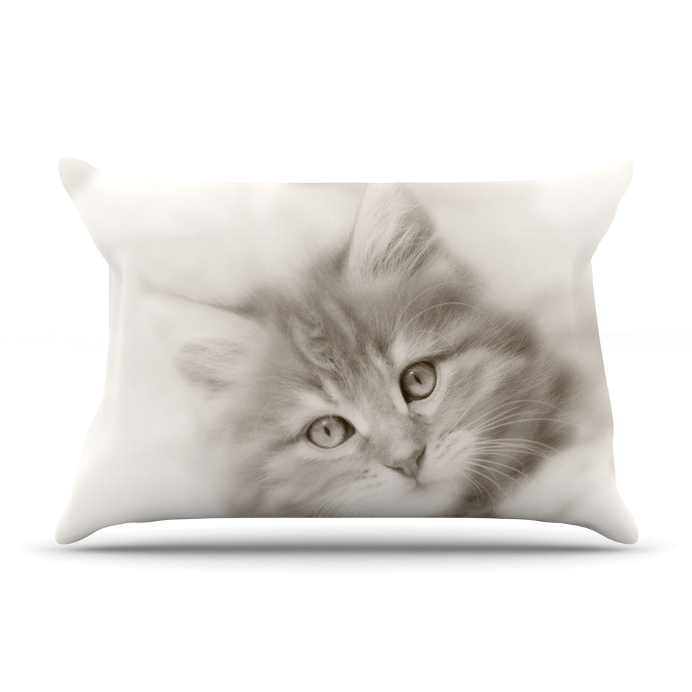 "Monika Strigel ""Main Coon Kitten"" Gray Cat Pillow Sham - KESS InHouse"