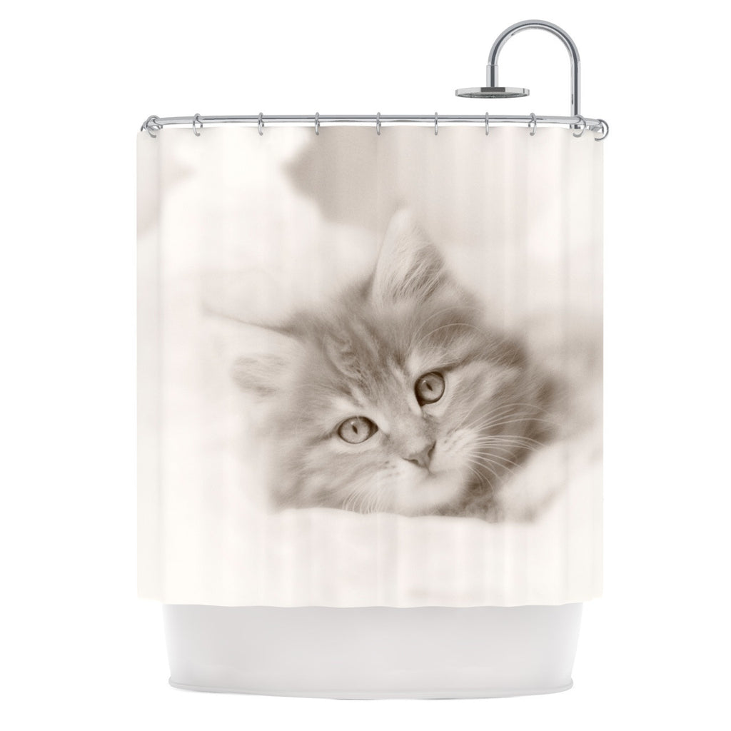 "Monika Strigel ""Main Coon Kitten"" Gray Cat Shower Curtain - KESS InHouse"