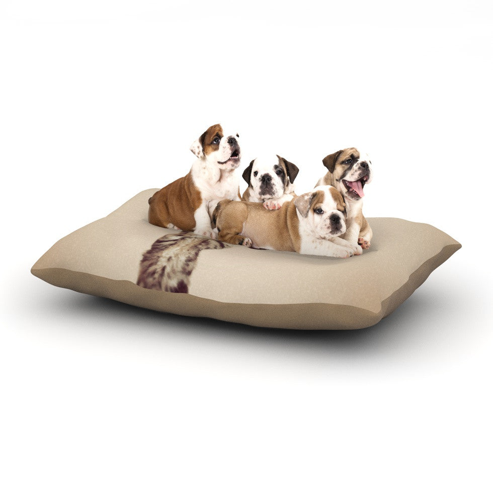 "Monika Strigel ""Upside Down"" Brown Cats Dog Bed - KESS InHouse  - 1"