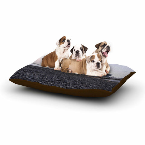 "Nick Nareshni ""Lifeguard On The Rocks"" Gray White Dog Bed - Outlet Item"