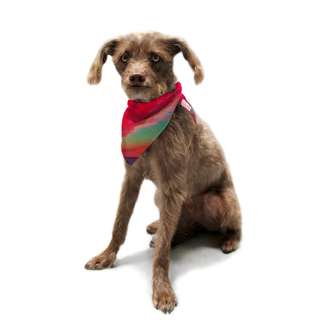 "Oriana Cordero ""Apetto All'alba"" Red Teal Pet Bandana - KESS InHouse  - 1"