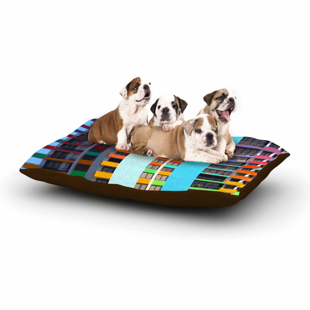 "Philip Brown ""The Rainbow Building"" Multicolor Modern Dog Bed - KESS InHouse  - 1"