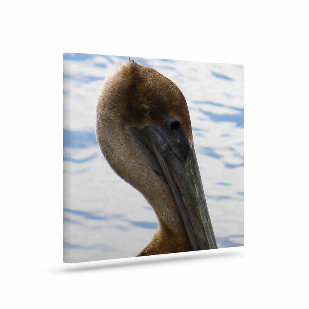 "Philip Brown ""Pelican Waiting"" Blue Photography Canvas Art - KESS InHouse  - 1"