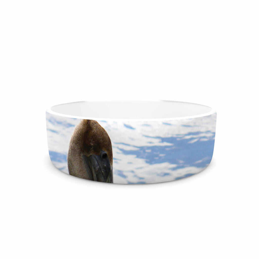 "Philip Brown ""Pelican Waiting"" Blue Photography Pet Bowl - KESS InHouse"