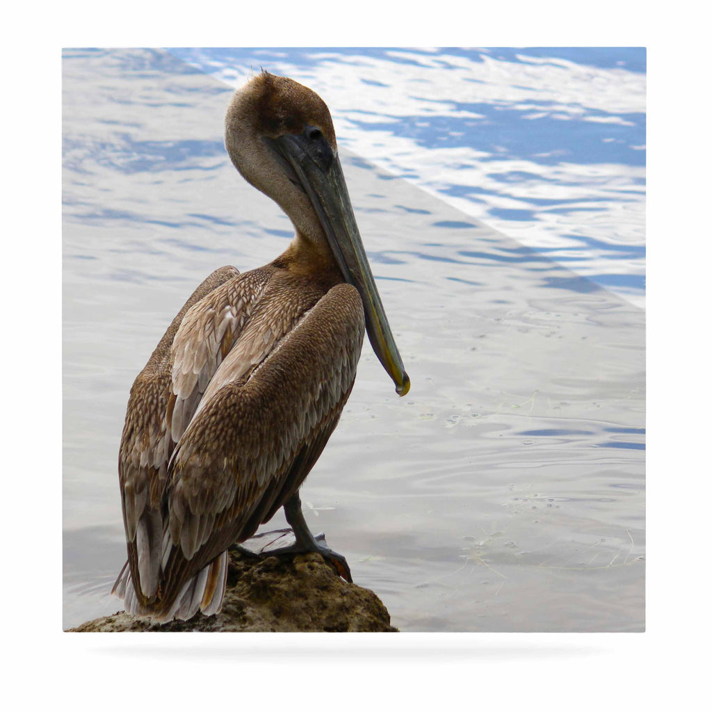 "Philip Brown ""Pelican Waiting"" Blue Photography Luxe Square Panel - KESS InHouse  - 1"