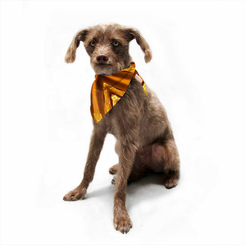 "Philip Brown ""Gold Star Icicles"" Gold Blue Pet Bandana - Outlet Item"