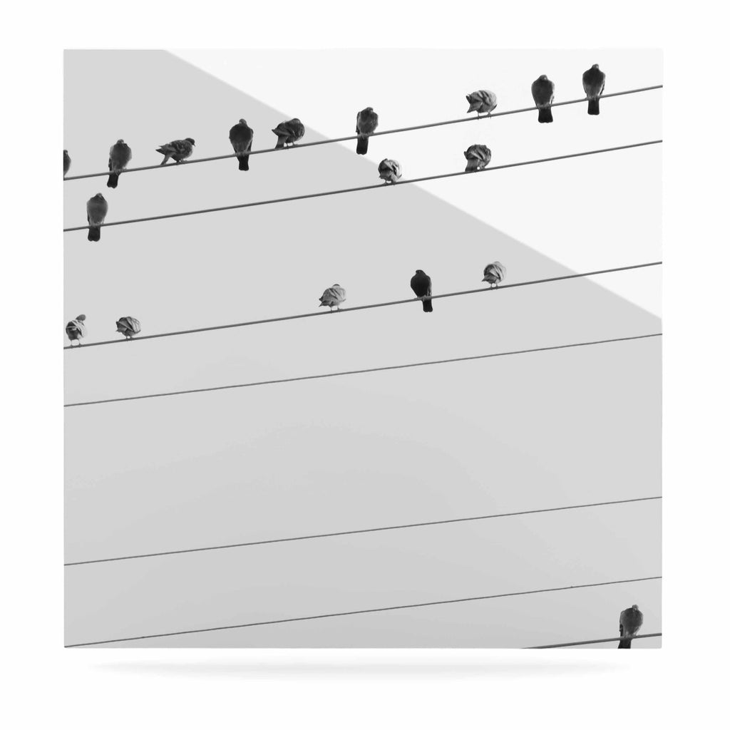"Qing Ji ""Birds on Wire"" Black White Luxe Square Panel - KESS InHouse  - 1"