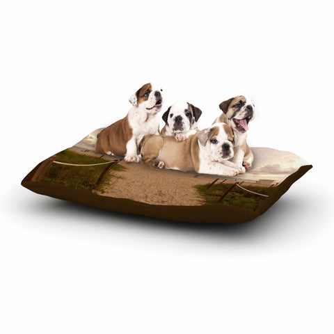 "Rosie Brown ""Walkway To Heaven"" Coastal Photography Dog Bed - KESS InHouse  - 1"