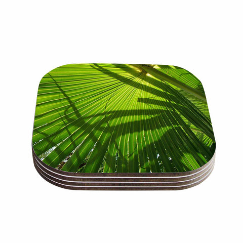 "Rosie Brown ""Palm Shadows"" Green Lime Coasters (Set of 4)"