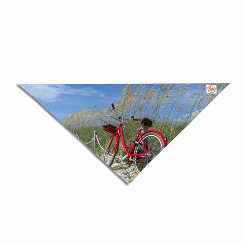 "Rosie Brown ""The Bike"" Blue Red Photography Pet Bandana"