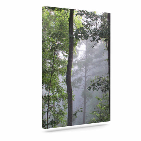 "Rosie Brown ""Morning Fog"" Green Gray Photography Canvas Art"