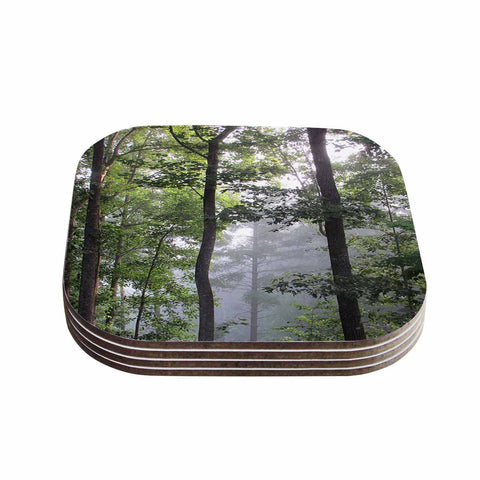 "Rosie Brown ""Morning Fog"" Green Gray Photography Coasters (Set of 4)"
