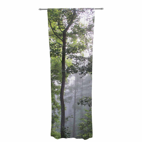 "Rosie Brown ""Morning Fog"" Green Gray Photography Decorative Sheer Curtain"
