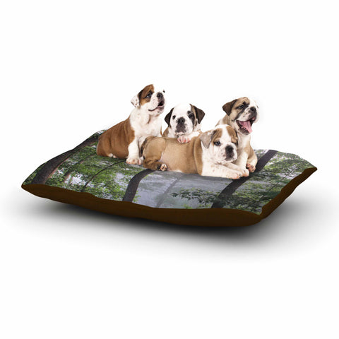 "Rosie Brown ""Morning Fog"" Green Gray Photography Dog Bed"