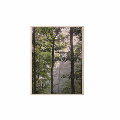 "Rosie Brown ""Morning Fog"" Green Gray Photography KESS Naturals Canvas (Frame not Included)"