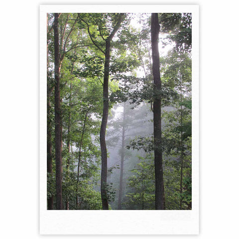 "Rosie Brown ""Morning Fog"" Green Gray Photography Fine Art Gallery Print"