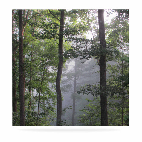 "Rosie Brown ""Morning Fog"" Green Gray Photography Luxe Square Panel"