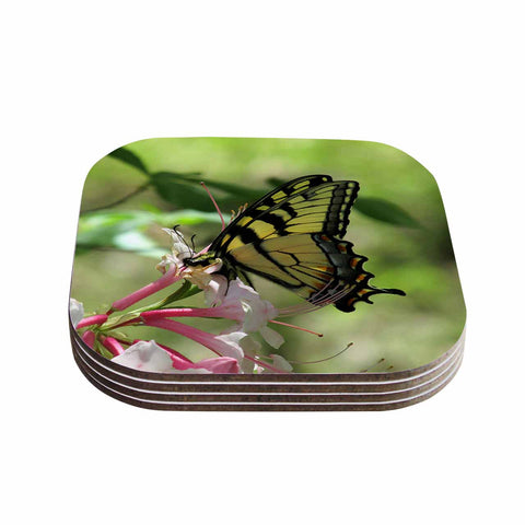 "Rosie Brown ""Gibbs Garden Butterfly"" Green Yellow Photography Coasters (Set of 4)"