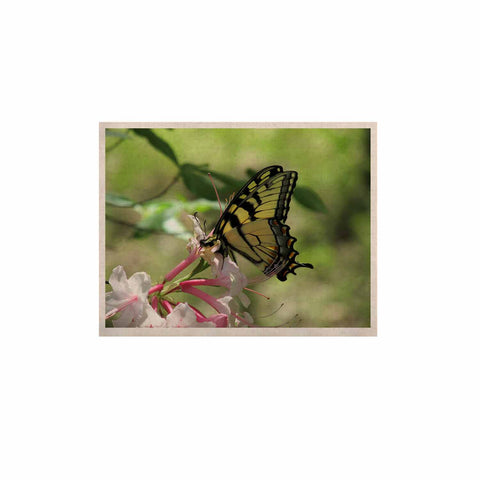 "Rosie Brown ""Gibbs Garden Butterfly"" Green Yellow Photography KESS Naturals Canvas (Frame not Included)"
