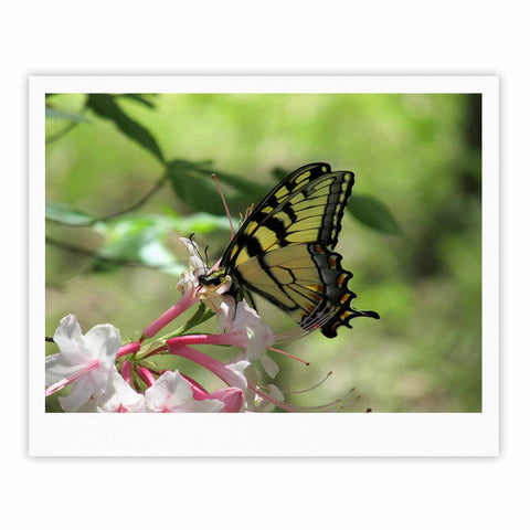 "Rosie Brown ""Gibbs Garden Butterfly"" Green Yellow Photography Fine Art Gallery Print"