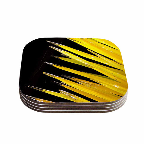 "Rosie Brown ""Glass Art"" Yellow Black Photography Coasters (Set of 4)"