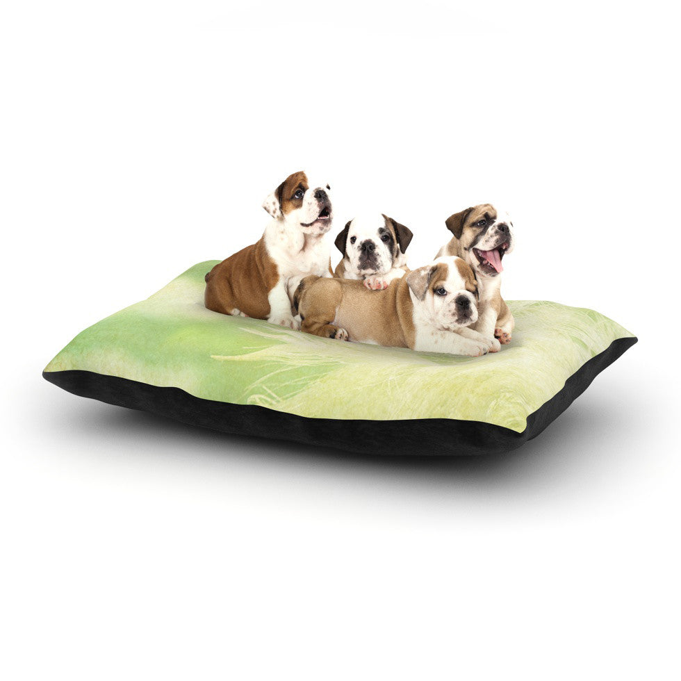 "Robin Dickinson ""Love You More"" Dog Bed - KESS InHouse  - 1"