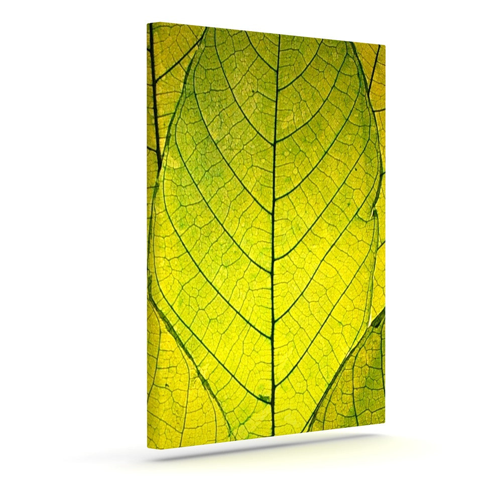 "Robin Dickinson ""Every Leaf a Flower"" Outdoor Canvas Wall Art - KESS InHouse  - 1"
