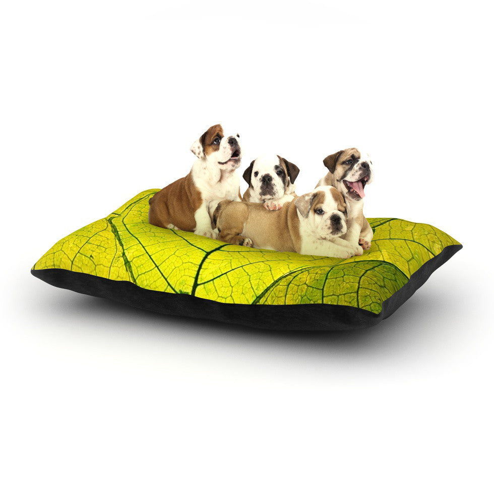"Robin Dickinson ""Every Leaf a Flower"" Dog Bed - KESS InHouse  - 1"