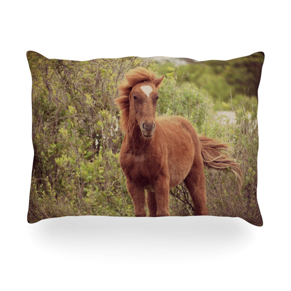 "Robin Dickinson ""Confuscous"" Brown Green Oblong Pillow - KESS InHouse"