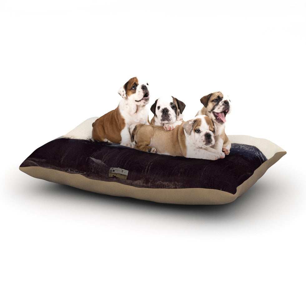 "Robin Dickinson ""Go Into the Unknown"" Brownn White Dog Bed - KESS InHouse  - 1"
