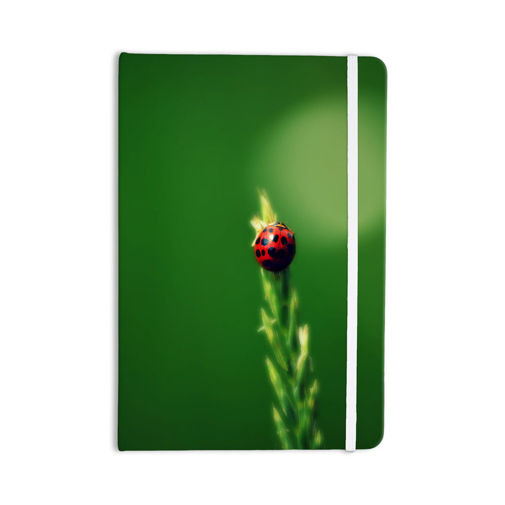 "Robin Dickinson ""Ladybug Hugs"" Green Everything Notebook - KESS InHouse  - 1"