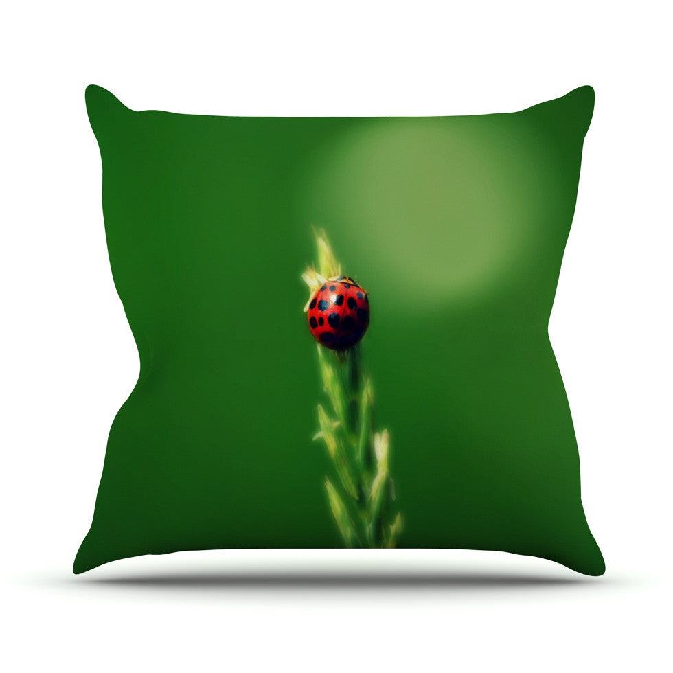 "Robin Dickinson ""Ladybug Hugs"" Green Outdoor Throw Pillow - KESS InHouse  - 1"